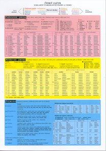 Tabulka ČJ - základní tvaroslovné pojmy a vzory