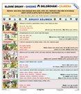 Slovní druhy / Skloňování zájmen - tabulka A4