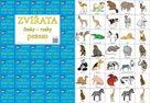 Pexeso česky - rusky Zvířata