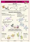 Geometrie - úhel - tabulka A4