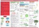 Botanika - tabulka přehled učiva