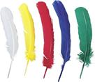 Dekorativní Indiánské peří 50ks, mix barev