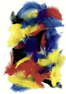 Dekorativní peříčka slepičí 2 g, mix barev