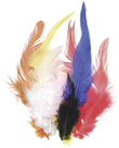 Dekorativní peříčka kohoutí 16 ks, mix barev