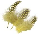 Dekorativní peříčka Guinea 20 ks, žlutá