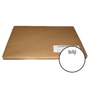 Kreslicí karton A1 220 g - 100 ks