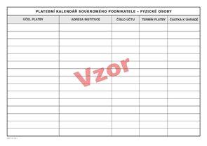 Peněžní deník pro neplátce DPH minimální povinné členění příjmů a výdajů