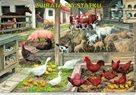Zvířata na statku - výuková tabule