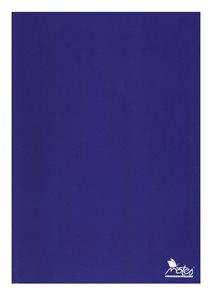 Záznamová kniha A4 100 listů nelinkovaná - modrá