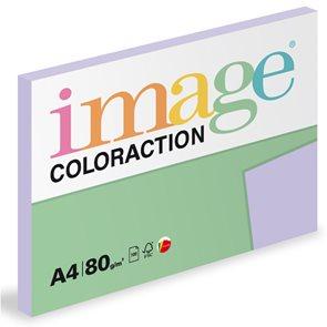Coloraction A4 80g 100ks - Tundra/pastelově fialová
