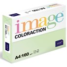 Coloraction A4 160 g 250 ks - Jungle/pastelově sv.zelená