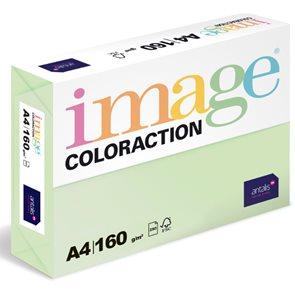 Coloraction A4 160g 250ks - Jungle/pastelově sv.zelená