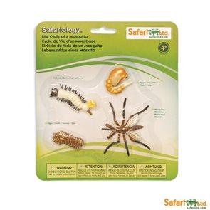 Životní cyklus - Komár - blistr - Safari Ltd.