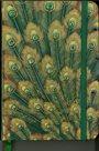 Zápisník A5 s gumičkou linkovaný - paví pera