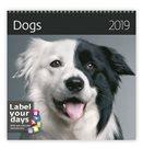 Kalendář nástěnný 2019 Label your days - Dogs