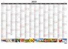Kalendář nástěnný 2019 - Plánovací roční mapa A1 obrázková