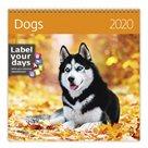 Kalendář nástěnný 2020 Label your days - Dogs