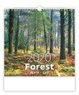 Kalendář nástěnný 2020 - Forest/Wald/Les