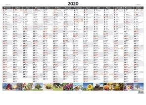 Kalendář nástěnný 2020 - Plánovací roční mapa A1 obrázková