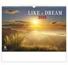Kalendář nástěnný 2020 - Like a Dream