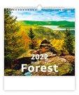 Kalendář nástěnný 2022 - Forest/Wald/Les
