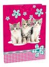 Box na sešity A4 s klopou Cats