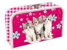 Kufřík Cats