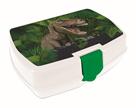Karton PP Box na svačinu - T-REX