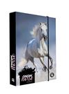 Desky na sešity s boxem A4 Jumbo - Kůň 2020/snow horse