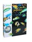 Box na sešity A5 - Ryby-akvárium