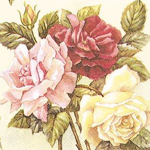 Ubrousky 33 × 33 - Růže