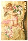Pohlednice - Andělíček a růže