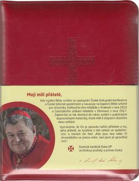 Bible (2) - 14x18 cm