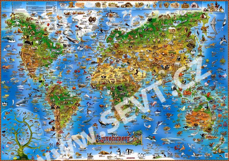 Detska Mapa Zivocichove Sveta Sevt Cz