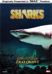 DVD - Pátrání po velkém žralokovi - IMAX /40min/