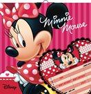 Plánovací nástěnný kalendář 30x60cm - Minnie