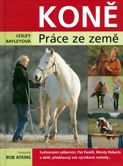 Koně - práce ze země - Bayleyová Lesley