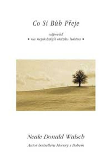 Co si bůh přeje - Walsch Neale Donald
