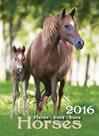 Kalendář nástěnný 2016 - Koně - Horses
