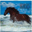 Kalendář nástěnný 2016 - Koně a moře, poznámkový