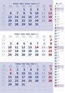 Kalendář nástěnný 2017 - 3měsíční/modrý s poznámkami