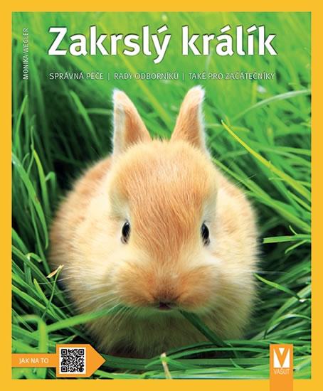 Zakrslý králík - Jak na to - Weglerová Monika
