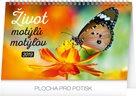 Kalendář stolní 2019  - Život motýlů – motýlov CZ/SK, 23,1 x 14,5 cm