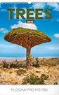 Kalendář nástěnný 2019 - Stromy, 33 x 46 cm
