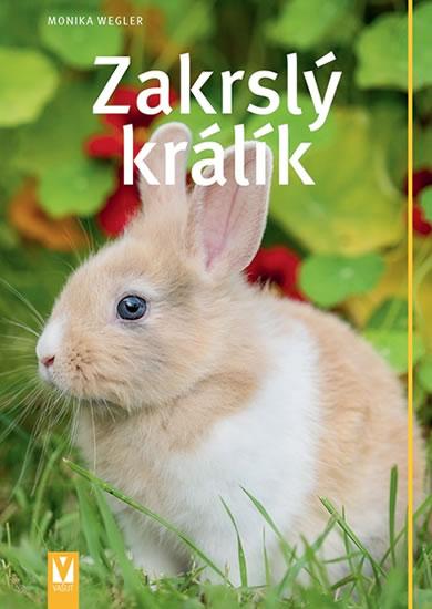 Zakrslý králík - Weglerová Monika