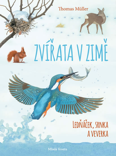 Zvířata v zimě - Ledňáček, srnka a veverka - Müller Thomas