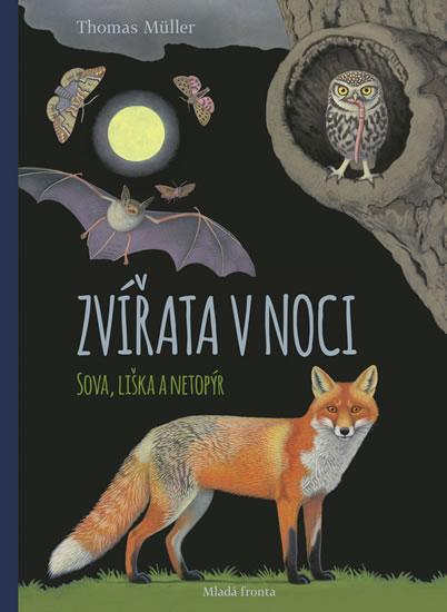Zvířata v noci - Sova, Liška a Netopýr - Müller Thomas
