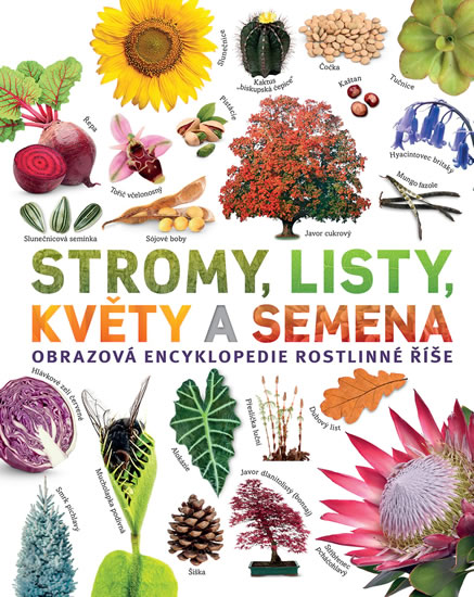 Stromy, listy, květy a semena - Obrazová encyklopedie rostlinné říše - Jose Sarah