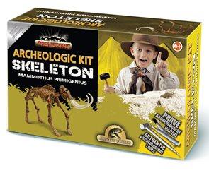 Archeolog Skeleton - Mammuthus