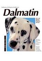 Dalmatin - jak na to